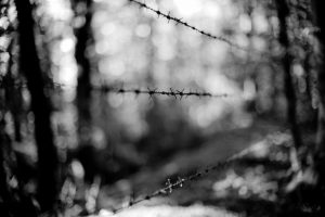 Barriere della mente - Giacomo Giachi Ph.